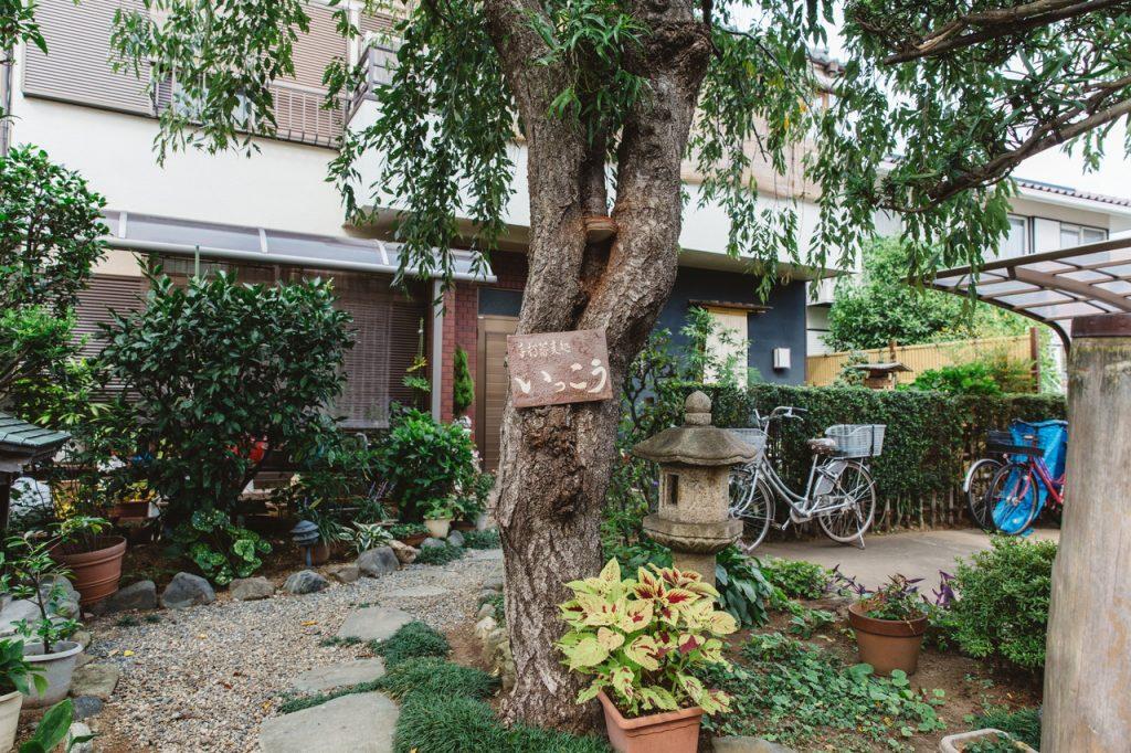手打蕎麦いっこう 庭に植えてある木