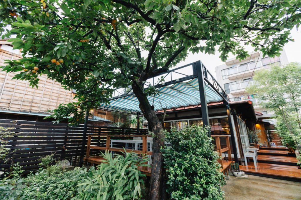 カキノキテラス 柿の木とテラス席